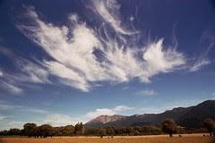 South Island NZ - West Coast