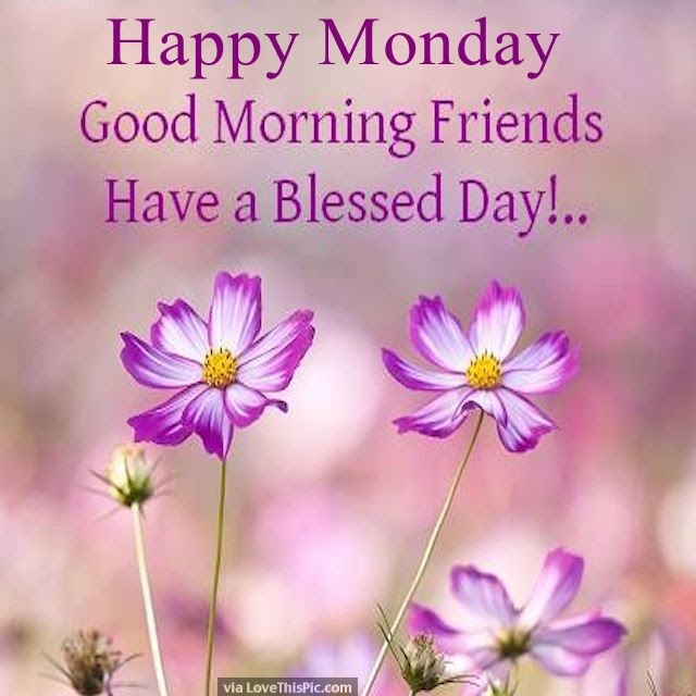 Happy Monday Good Morning Friends Pictures Photos And Images For