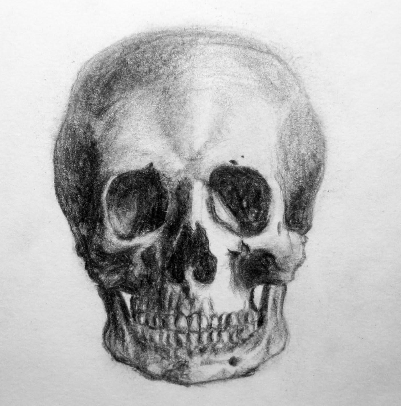 skull drawing drawing pics