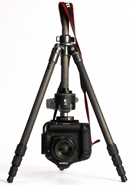 Gitzo GT1514 Reversible Center Column with a Canon 1D Mark IV Pro Body