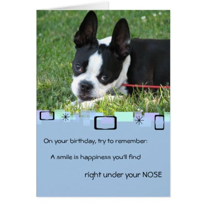 Boston Terrier All Occasion Greeting Card