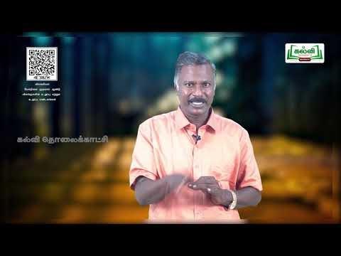 11th Zoology அலகு 2 விலங்குகளின் உறுப்பு மற்றும் உறுப்பு மண்டலம் Kalvi TV