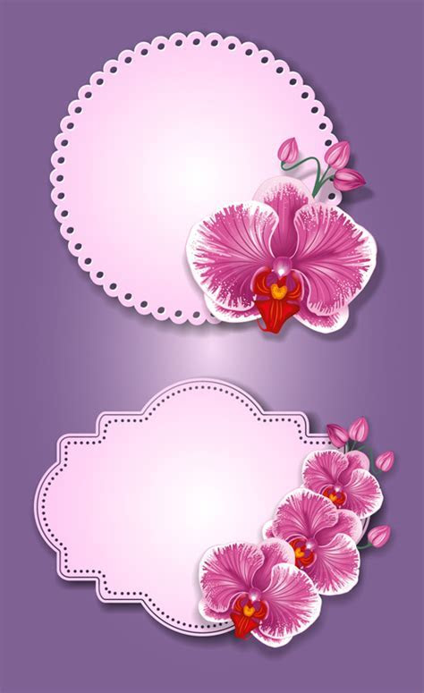 Flower and labels vector 05 free download