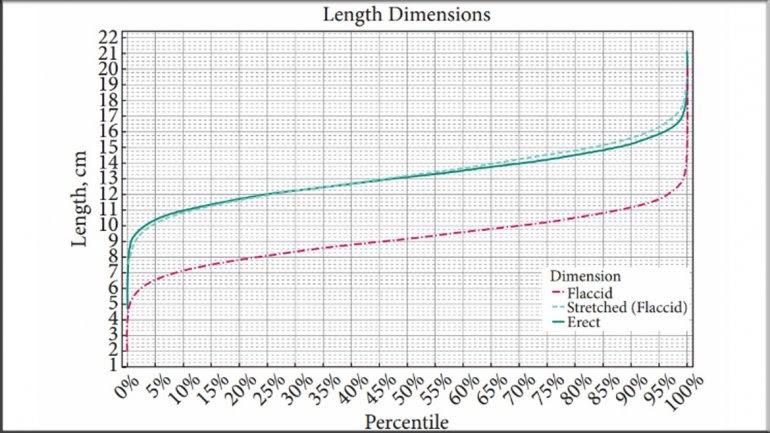 el universo bajo el microscopio   u00bfcu u00e1nto mide el pene