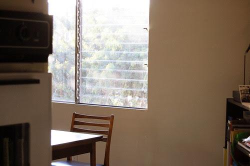 quiet afternoon, jalousie window