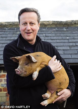 A distinguished Oxford contemporary claims Cameron once took part in an outrageous initiation ceremony involving a dead pig while at university. The PM is pictured holding a pig in recent years