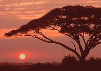 tramonto-africano.jpg