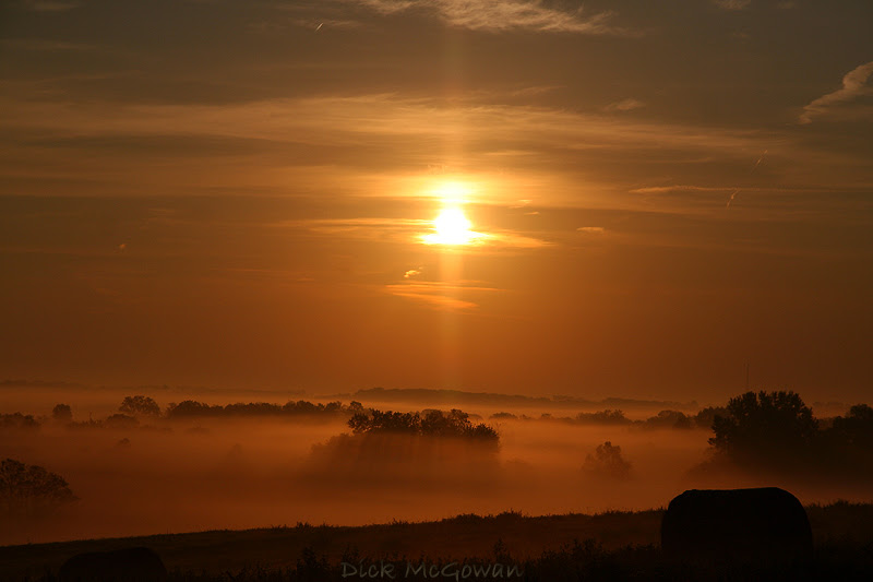 Pillar Fog