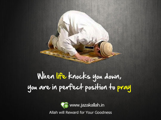 When Life Knocks You Downyou Are In Perfect Position To Pray Life