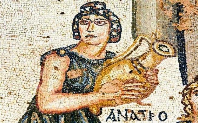 Arqueólogos italianos imitan el cultivo de la vid de hace 2 mil años
