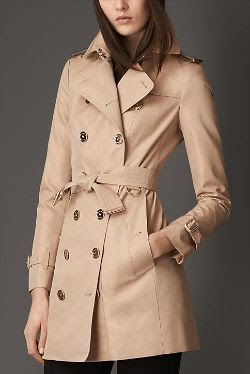 Burberry Mid-Length Metallic Trench
