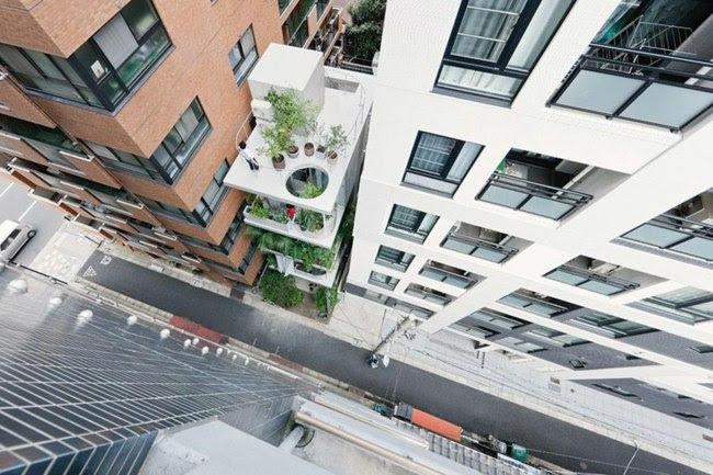 Einfamilienhaus mit Glasfassade und vertikalem Garten am
