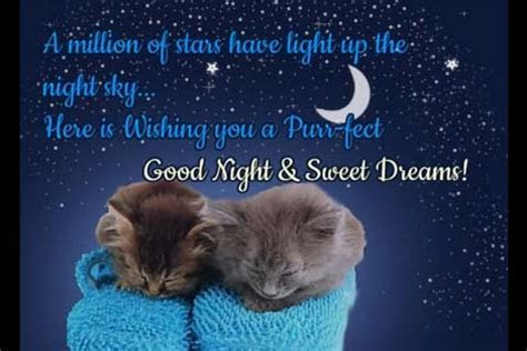 Purr fect Good Night Wishes! Free Good Night eCards