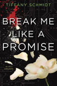 Title: Break Me Like a Promise: Once Upon a Crime Family, Author: Tiffany Schmidt