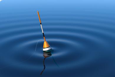 Afbeeldingsresultaat voor dobber in het water