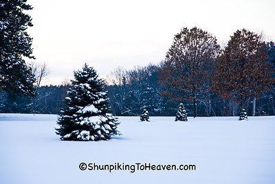 Early Morning Winter Scene, Sauk County, Wisconsin