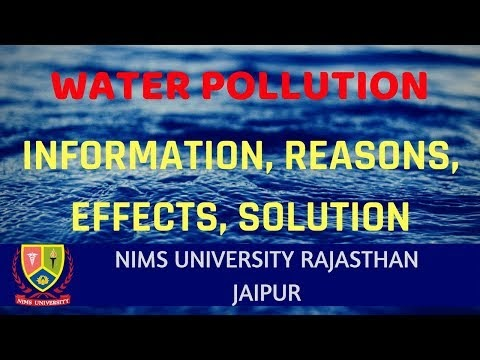 Video Lecture on Water Pollution