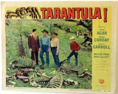 tarantula_lc1