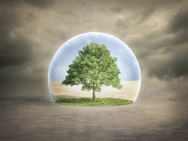 Xenobiology and environment. There must be a balance in which the pursuit of benefits for humans is combined with respect for nature and its laws