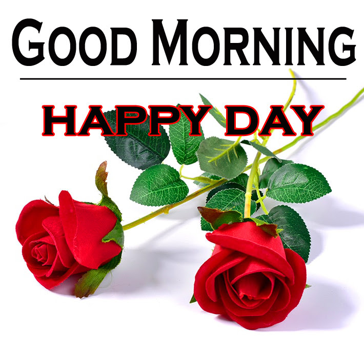 Morning Wishes Images With Red Rose 9