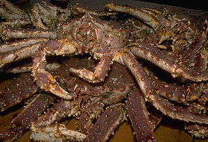 Red king crabs make up over 90% of the annual ...