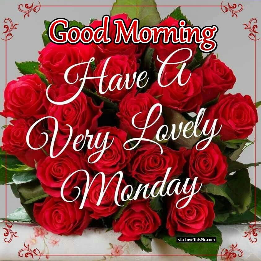 Good Morning Have A Very Lovely Monday Pictures Photos And Images
