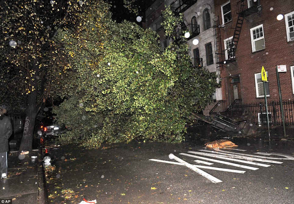 No go area: An uprooted tree blocks 7th street near Avenue D in the East Village as a result of high winds from Sandy on Monday in Manhattan, New York