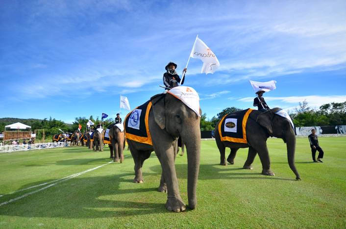Elephant-parade-during-Kings-Cup-Elephant Polo.jpg