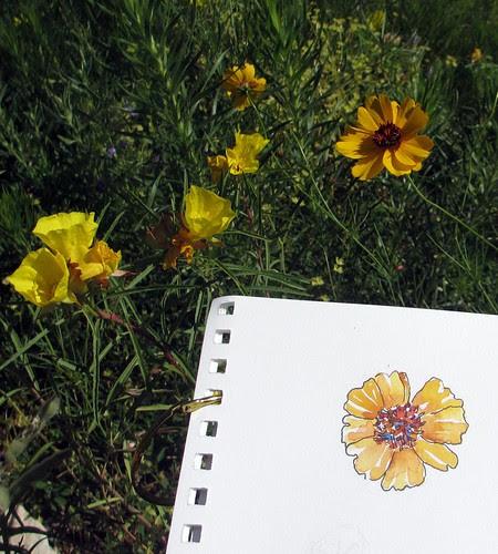 Sketchbook ~ Austin