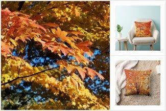 Autumn Style Home Decor