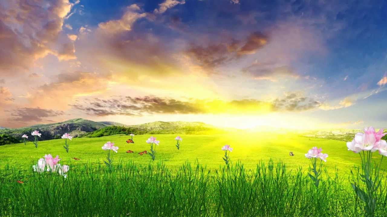 Happy Spring Animated Wallpaper http://www.desktopanimated ...