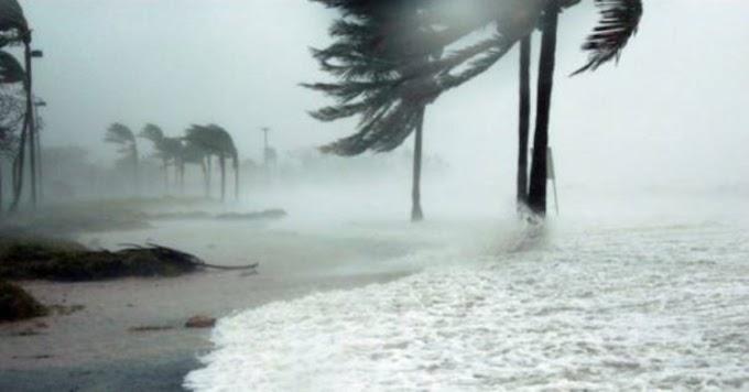Un perro iba a ahogarse en un auto durante el huracán Dorian, pero un oficial actuó de inmediato