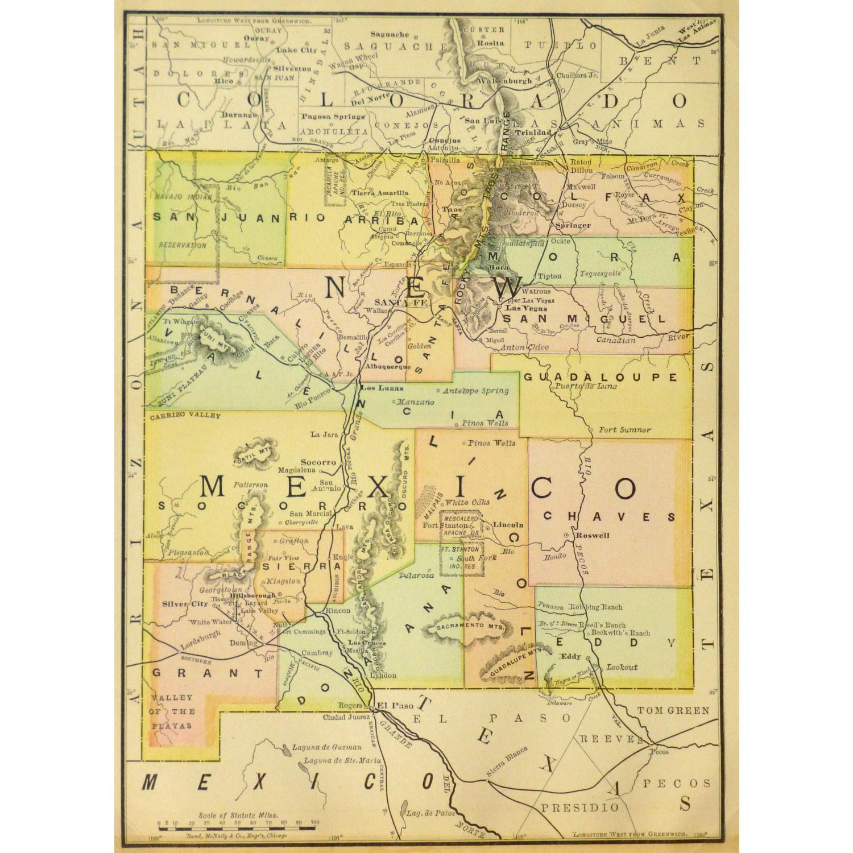 Map New Mexico 1891 Original Art Antique Maps Prints
