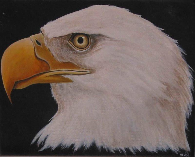 canadian aboriginal artist earl mckay eagle portrait For ...