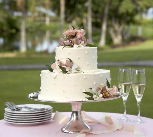 outdoor wedding locations,elegant wedding cakes