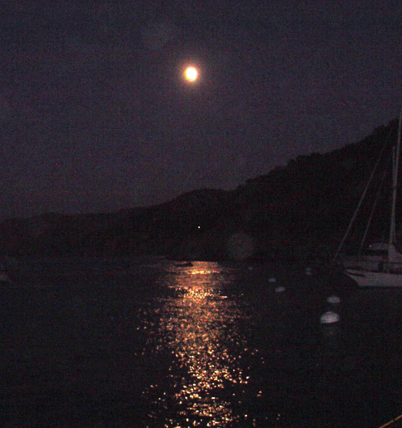 http://johnstodderinexile.files.wordpress.com/2006/08/full-moon-fever-for-blog.jpg