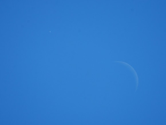Venus (upper left) by daylight. Photo by author.