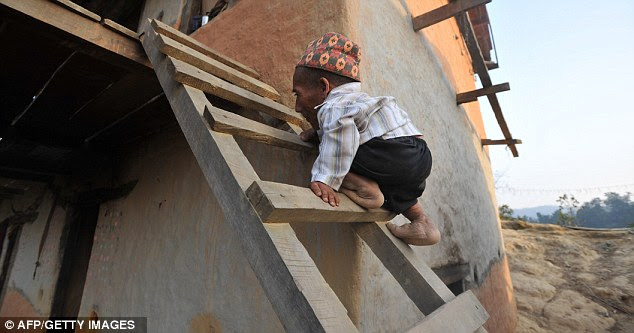 Home sweet home: Chandra Bahadur Dangi has to climb a ladder to get in to his home in the remote Reemkholi village in Dang district, 540 kilometres southwest of Kathmandu