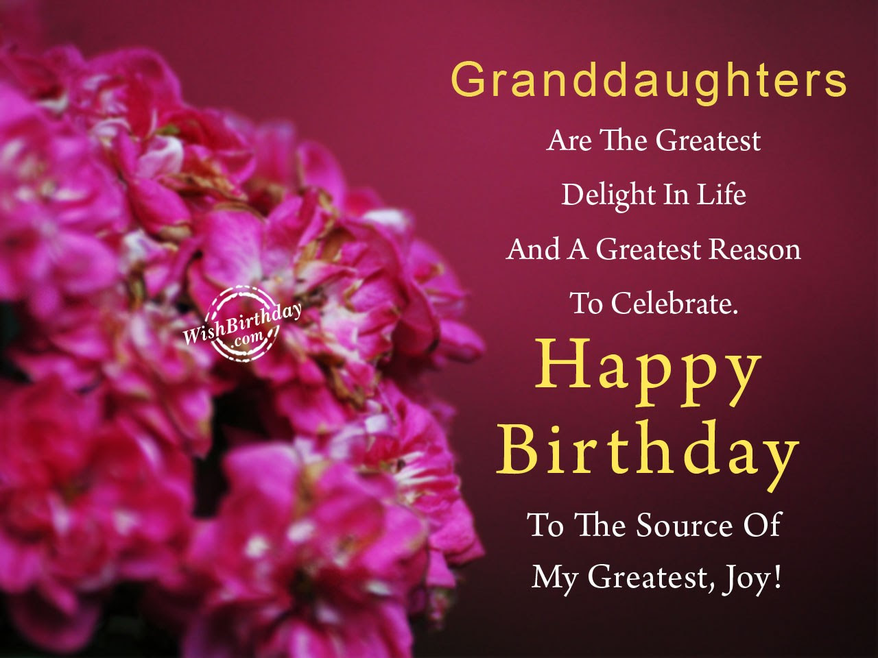 Happy Birthday Wishes To Our Granddaughter Birthday Wishes For