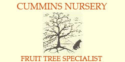 Cummins Nursery - Fruit Tree Specialist
