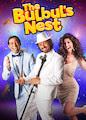 Bulbul's Nest, The