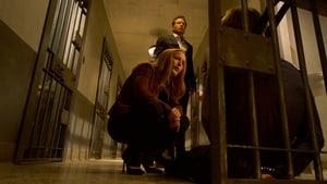 The X-Files Season 11 : Plus One