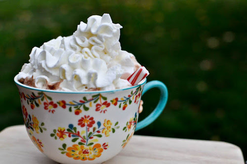 This looks rather cute, and rather yummy hehe Mmmmm could so drink a hot chocolate with marshmallows and cream nom nom :')