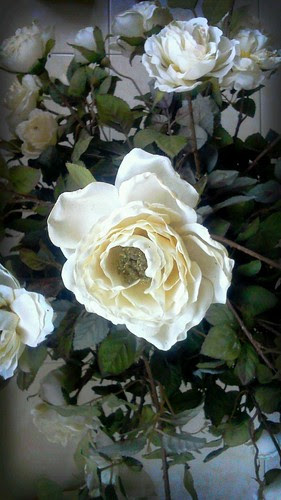 Artificial White Rose by rizauddin