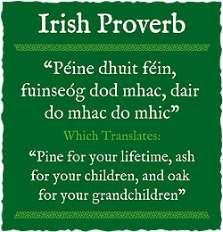 Irish Proverbs And Sayings World Cultures European