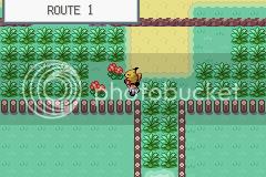 Pokemon yellow storm gba rom download