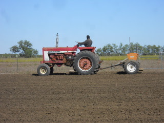 Planting Wheat Using the Tractor and Grain Drill
