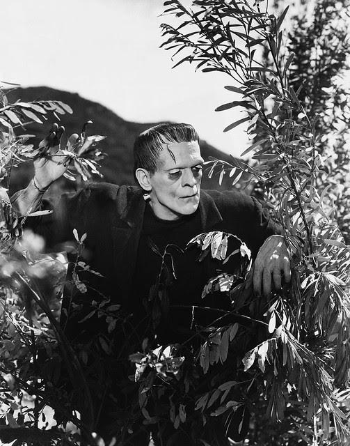 Frankenstein (Universal, 1931) 29