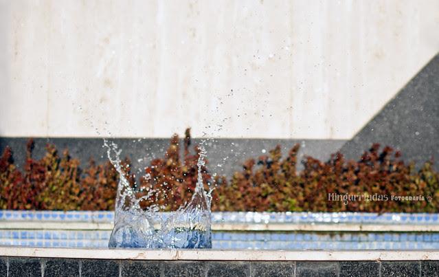 117/365 Super Splash !!!!