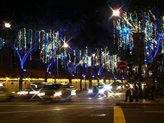 Christmas Light-Up